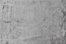 Εικόνα της Χαλί 80x150 Rabbit Silver