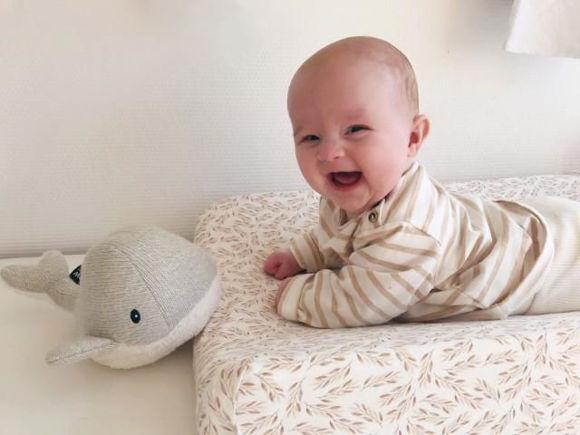 Εικόνα της FLOW. Υφασμάτινη Φάλαινα Moby με λευκούς ήχους & μουσική (απαλό γκρι)