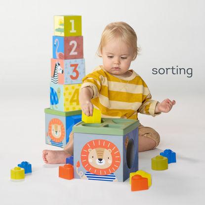 Εικόνα της Taf Toys Παιχνίδι Δραστηριοτήτων Savannah Sort & Stack 12+M