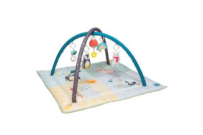 Εικόνα της Taf Toys Γυμναστήριο North Pole 4 Seasons